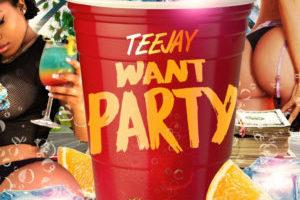 Teejay – Want Party – Slingerz Records